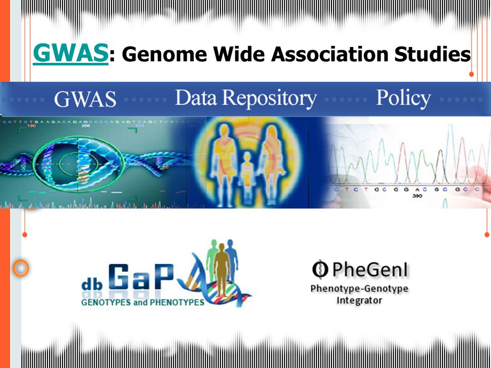 GWAS GWAS : Genome Wide Association Studies