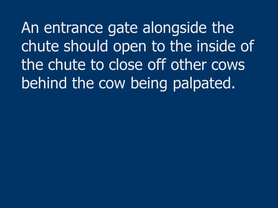 An entrance gate alongside the chute should open to the inside of the chute to close off other cows behind the cow being palpated.