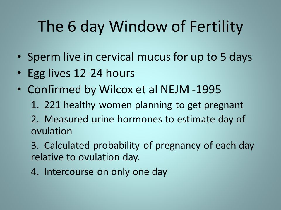 The 6 day Window of Fertility Sperm live in cervical mucus for up to 5 days Egg lives 12-24 hours Confirmed by Wilcox et al NEJM -1995 1.