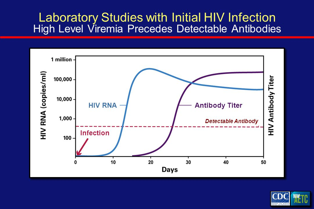 Laboratory Studies with Initial HIV Infection High Level Viremia Precedes Detectable Antibodies Antibody Titer Infection HIV RNA Antibody Titer Detectable Antibody