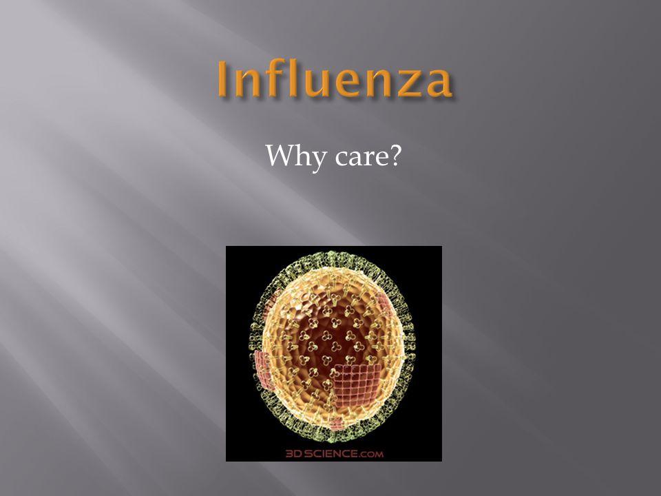 Flu Kills