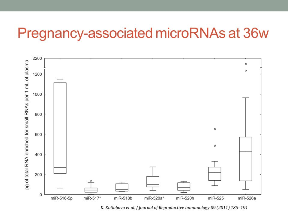 Pregnancy-associated microRNAs at 36w
