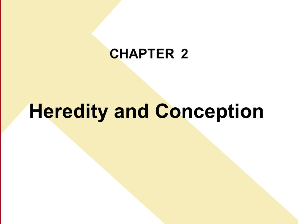 CHAPTER 2 Heredity and Conception