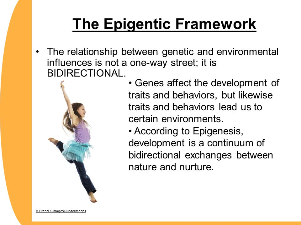The Epigentic Framework The relationship between genetic and environmental influences is not a one-way street; it is BIDIRECTIONAL.