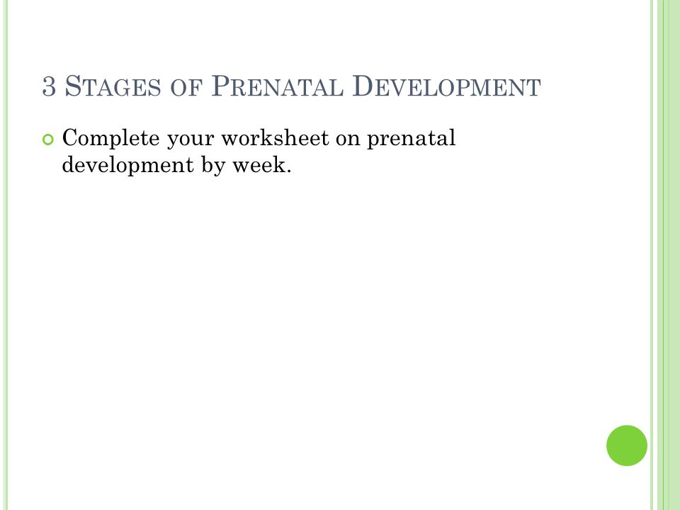 3 S TAGES OF P RENATAL D EVELOPMENT Complete your worksheet on prenatal development by week.