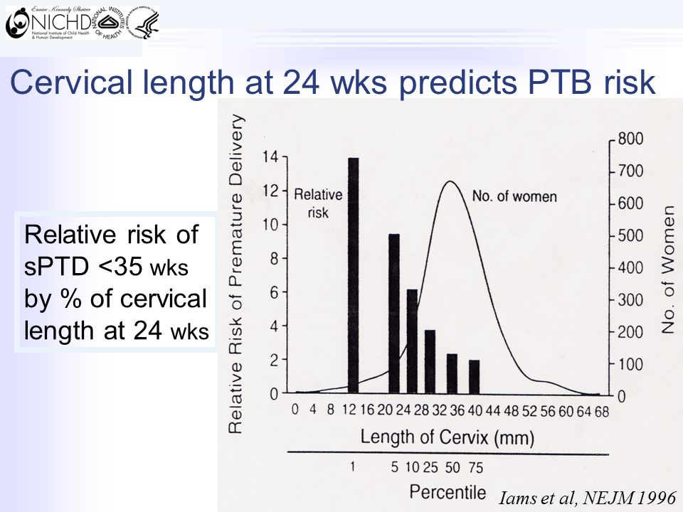 Relative risk of sPTD <35 wks by % of cervical length at 24 wks Iams et al, NEJM 1996 Cervical length at 24 wks predicts PTB risk