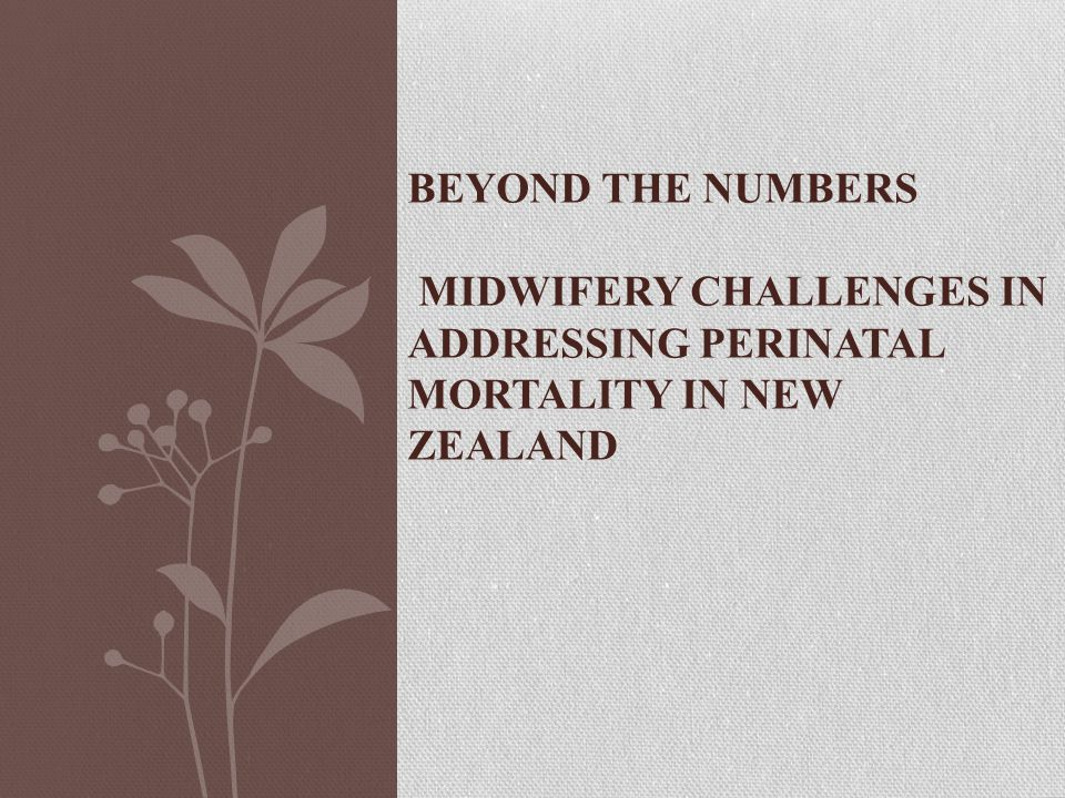 BEYOND THE NUMBERS MIDWIFERY CHALLENGES IN ADDRESSING PERINATAL MORTALITY IN NEW ZEALAND