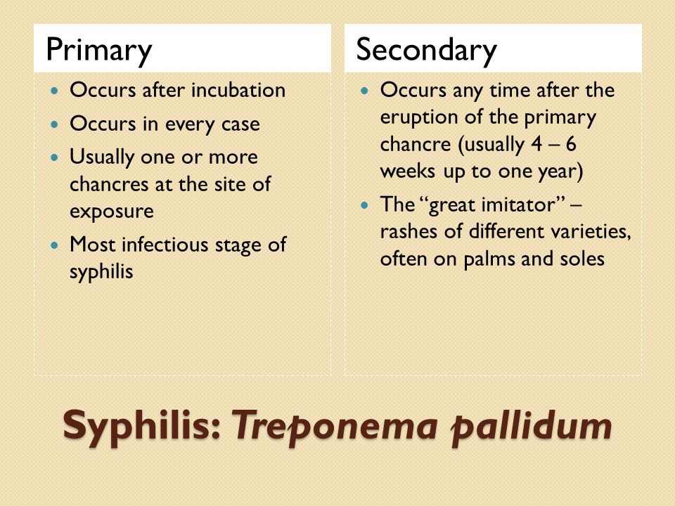 Syphilis: Treponema pallidum PrimarySecondary Occurs after incubation Occurs in every case Usually one or more chancres at the site of exposure Most infectious stage of syphilis Occurs any time after the eruption of the primary chancre (usually 4 – 6 weeks up to one year) The great imitator – rashes of different varieties, often on palms and soles