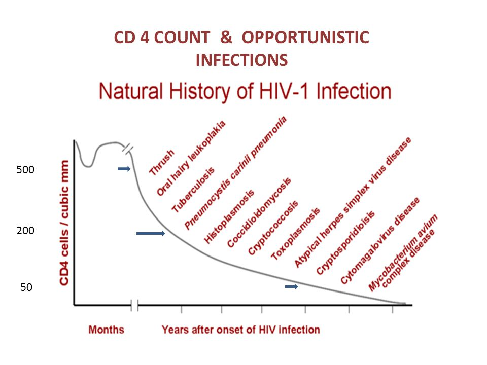500 200 50 CD 4 COUNT & OPPORTUNISTIC INFECTIONS