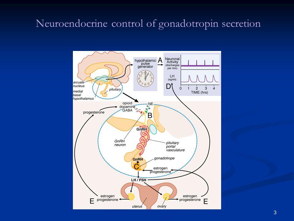 3 Neuroendocrine control of gonadotropin secretion