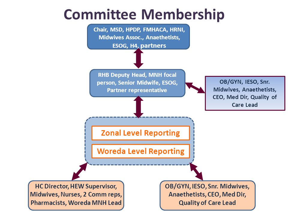 Committee Membership Chair, MSD, HPDP, FMHACA, HRNI, Midwives Assoc., Anaethetists, ESOG, H4, partners Zonal Level Reporting Woreda Level Reporting HC Director, HEW Supervisor, Midwives, Nurses, 2 Comm reps, Pharmacists, Woreda MNH Lead OB/GYN, IESO, Snr.