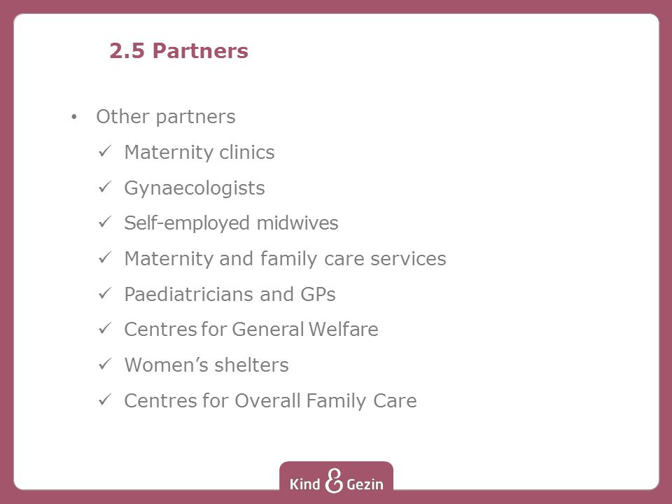 2.5 Partners Other partners Maternity clinics Gynaecologists Self-employed midwives Maternity and family care services Paediatricians and GPs Centres for General Welfare Women's shelters Centres for Overall Family Care