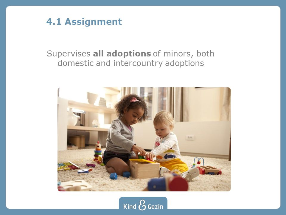4.1 Assignment Supervises all adoptions of minors, both domestic and intercountry adoptions