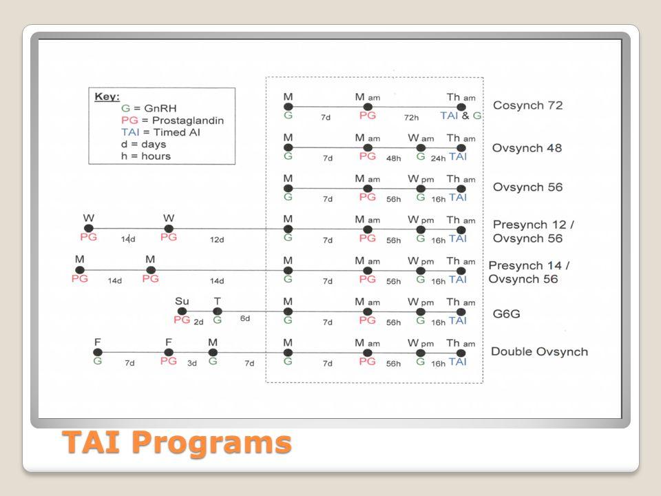 TAI Programs