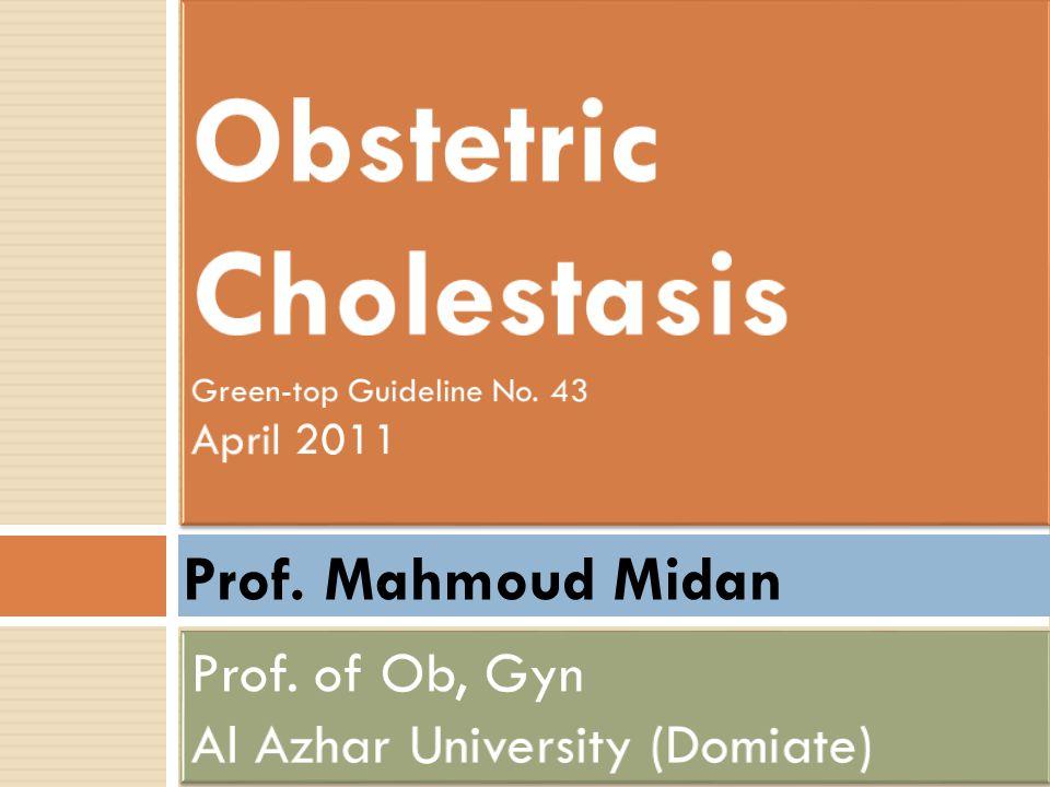 Prof. Mahmoud Midan