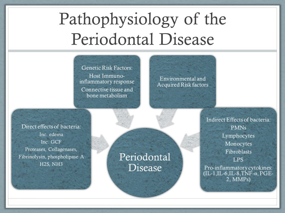 Pathophysiology of the Periodontal Disease Periodontal Disease Direct effects of bacteria: Inc. edema Inc. GCF Proteases, Collagenases, Fibrinolysin,