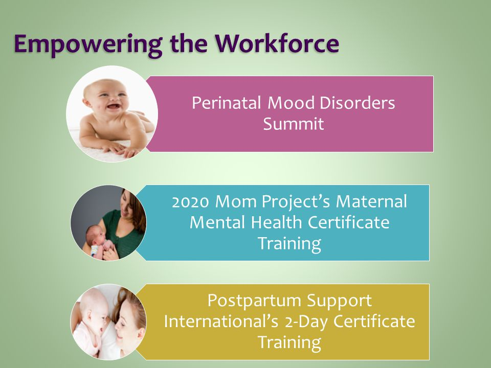 Perinatal Mood Disorders Summit 2020 Mom Project's Maternal Mental Health Certificate Training Postpartum Support International's 2-Day Certificate Training