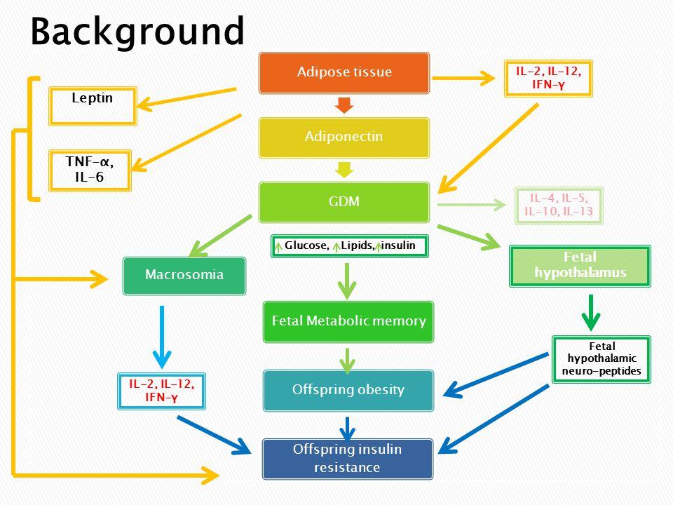 Adipose tissueAdiponectinGDMFetal Metabolic memory Macrosomia Offspring obesityOffspring insulin resistance TNF-α, IL-6 Leptin IL-2, IL-12, IFN-γ IL-4, IL-5, IL-10, IL-13 Fetal hypothalamic neuro-peptides Fetal hypothalamus IL-2, IL-12, IFN-γ Glucose, Lipids, insulin Background
