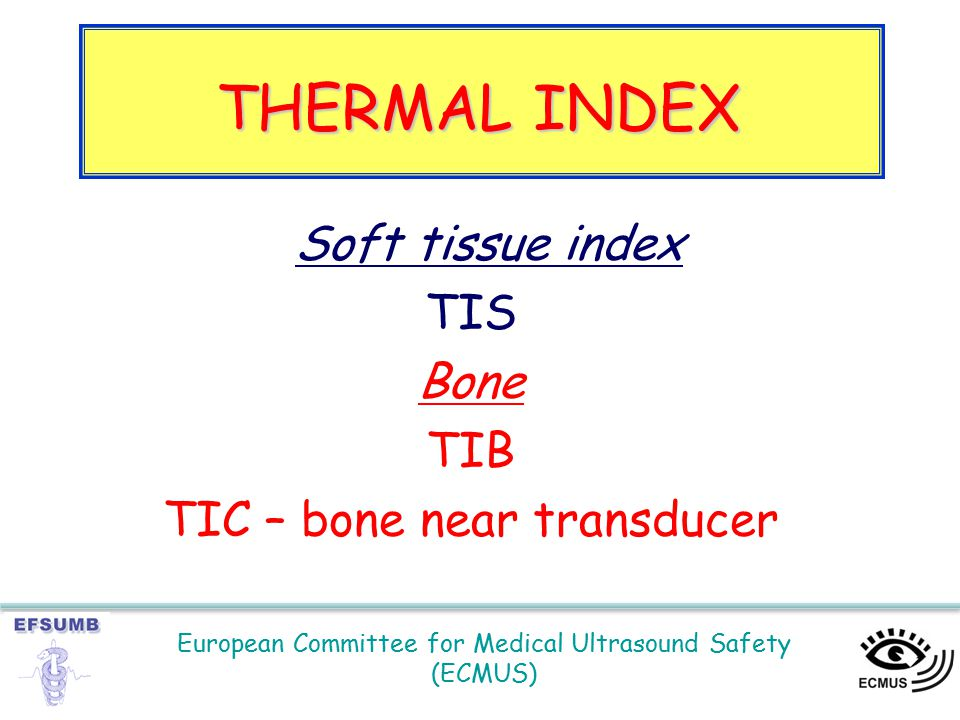 European Committee for Medical Ultrasound Safety (ECMUS) Soft tissue index TIS Bone TIB TIC – bone near transducer THERMAL INDEX