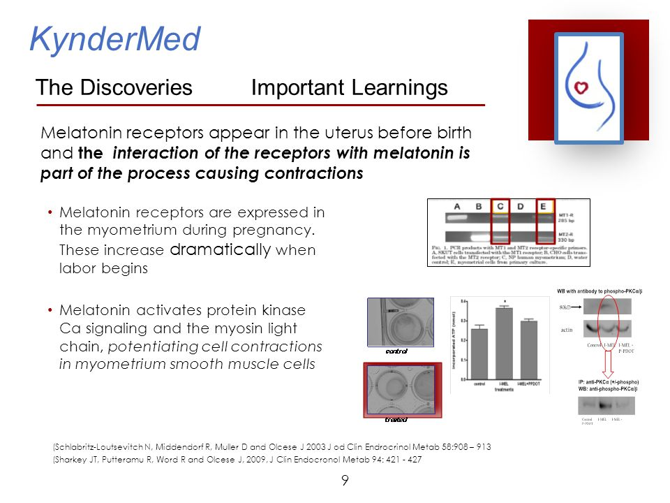 30 Appendix Scientific References Martensson LG, Andersson RG, Berg G 1996 Melatonin together with noradrenaline augments contractions of human myometrium.