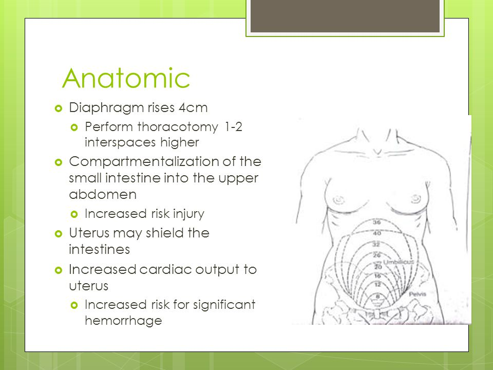 Anatomic  Diaphragm rises 4cm  Perform thoracotomy 1-2 interspaces higher  Compartmentalization of the small intestine into the upper abdomen  Increased risk injury  Uterus may shield the intestines  Increased cardiac output to uterus  Increased risk for significant hemorrhage