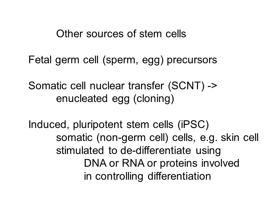 Other sources of stem cells Fetal germ cell (sperm, egg) precursors Somatic cell nuclear transfer (SCNT) -> enucleated egg (cloning) Induced, pluripot
