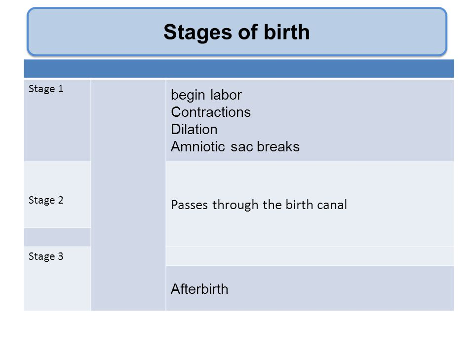 Stages of birth Stage 1 begin labor Contractions Dilation Amniotic sac breaks Stage 2 Passes through the birth canal Stage 3 Afterbirth