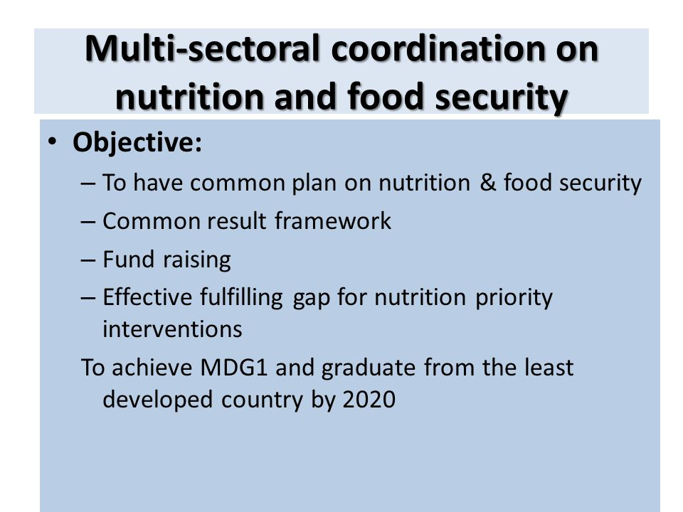 Multi-sectoral coordination on nutrition and food security Objective: – To have common plan on nutrition & food security – Common result framework – F