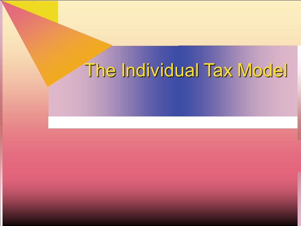 The Individual Tax Model