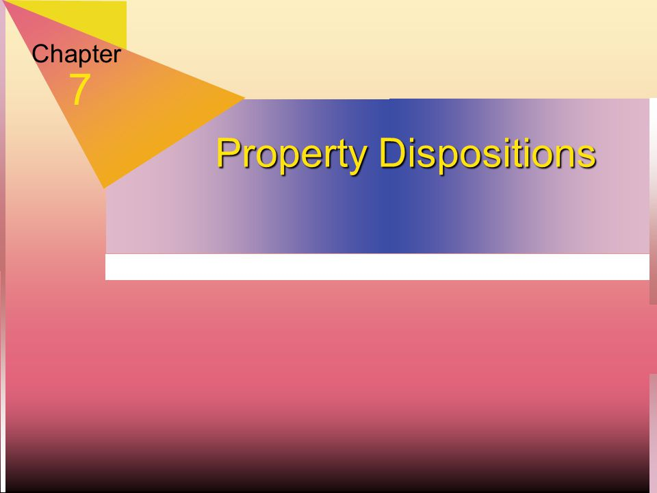 Chapter 7 Property Dispositions