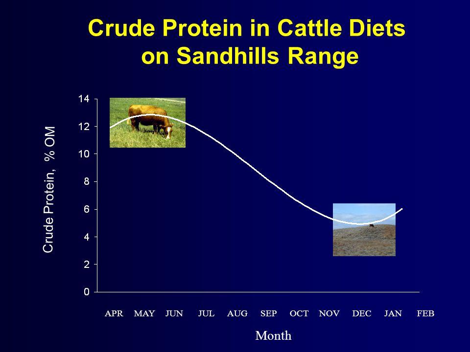 Crude Protein in Cattle Diets on Sandhills Range Crude Protein, % OM APR MAY JUN JUL AUG SEP OCT NOV DEC JAN FEB Month