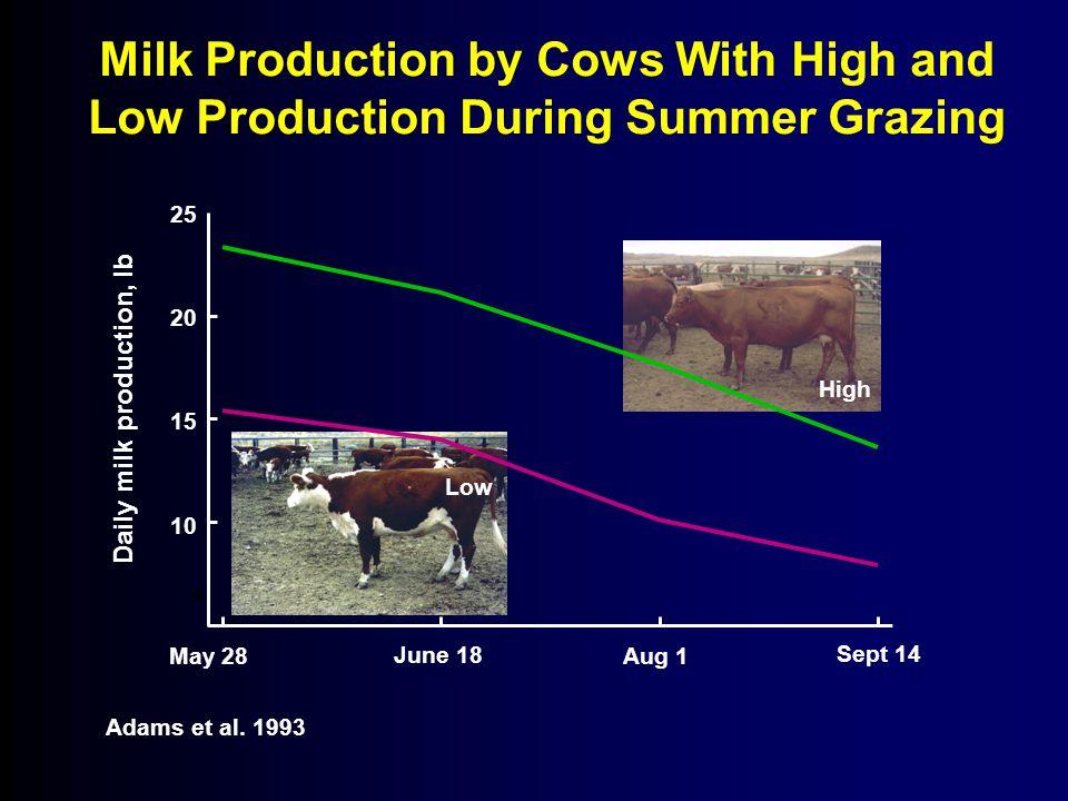 5 10 15 20 25 Daily milk production, lb Aug 1 Sept 14 May 28 Adams et al.