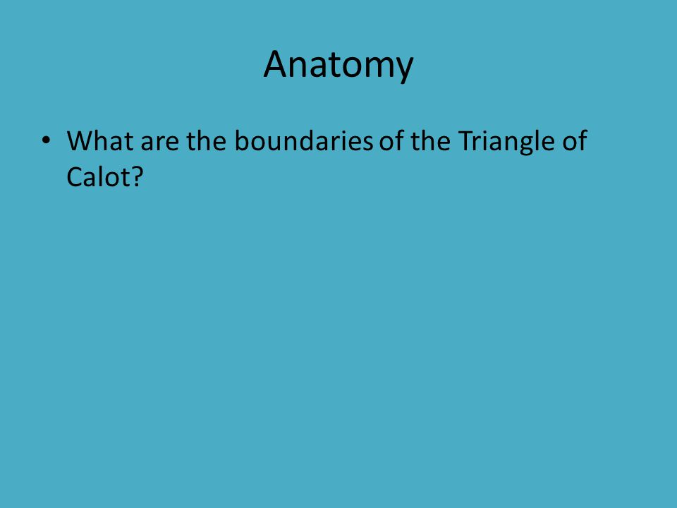 Anatomy What are the boundaries of the Triangle of Calot?