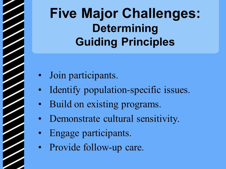 Five Major Challenges: Determining Guiding Principles Join participants.