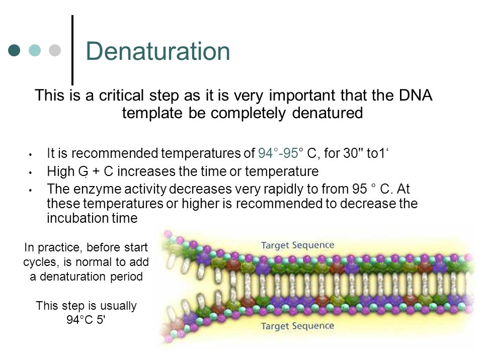 RT-PCR This technique is commonly used in molecular biology to detect RNA expression levels RNA It is used to qualitatively detect gene expression through creation of complementary DNA (cDNA) transcripts from RNAcomplementary DNA Genetic Disease Diagnosis :RT-PCR can be used to diagnose genetic disease such as Lesch–Nyhan syndrome.
