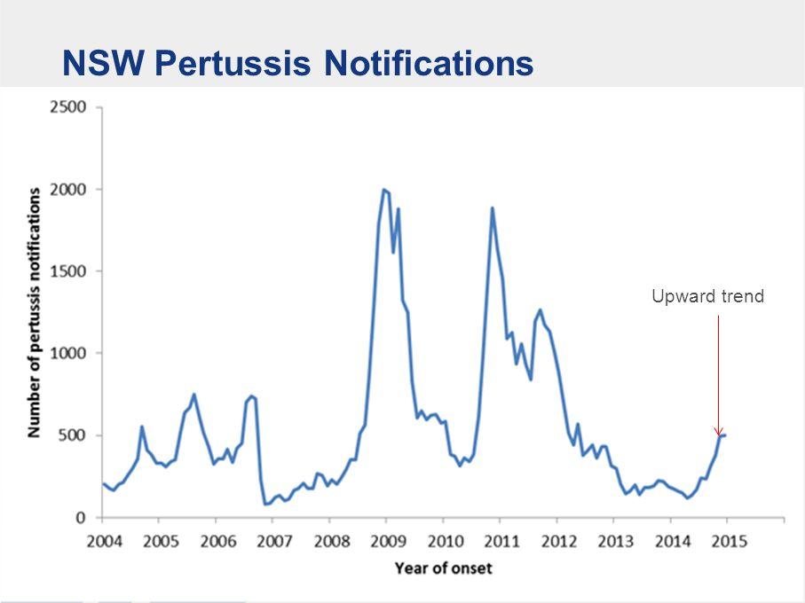 NSW Pertussis Notifications Upward trend