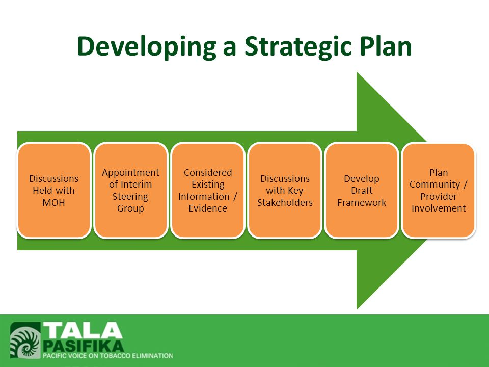 Developing a Strategic Plan Discussions Held with MOH Appointment of Interim Steering Group Considered Existing Information / Evidence Discussions with Key Stakeholders Develop Draft Framework Plan Community / Provider Involvement