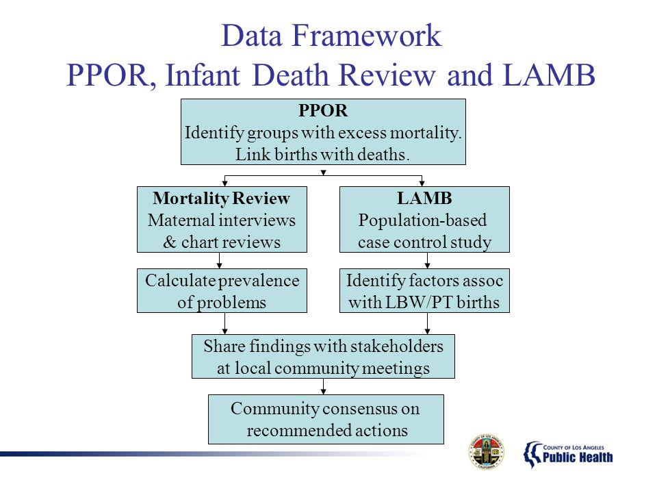 Data Framework PPOR, Infant Death Review and LAMB PPOR Identify groups with excess mortality.