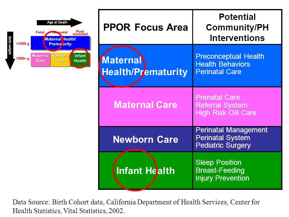 PPOR Focus Area Potential Community/PH Interventions Maternal Health/Prematurity Preconceptual Health Health Behaviors Perinatal Care Maternal Care Prenatal Care Referral System High Risk OB Care Newborn Care Perinatal Management Perinatal System Pediatric Surgery Infant Health Sleep Position Breast-Feeding Injury Prevention Data Source: Birth Cohort data, California Department of Health Services, Center for Health Statistics, Vital Statistics, 2002.
