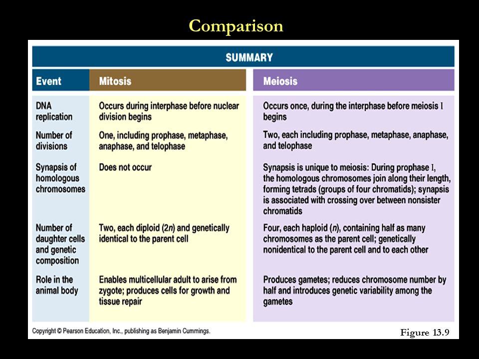 Comparison Figure 13.9