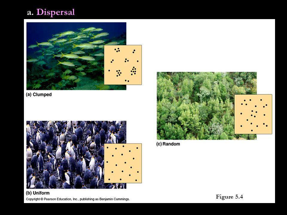 Figure 5.4 a. Dispersal