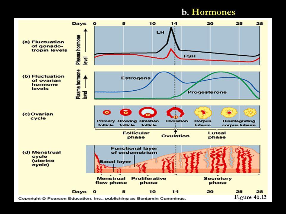 b. Hormones Figure 46.13