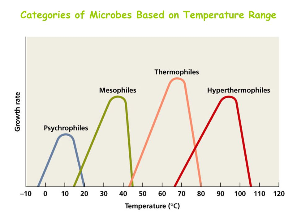 Categories of Microbes Based on Temperature Range
