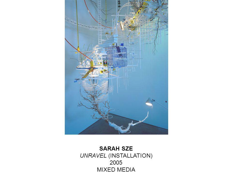 SARAH SZE UNRAVEL (INSTALLATION) 2005 MIXED MEDIA