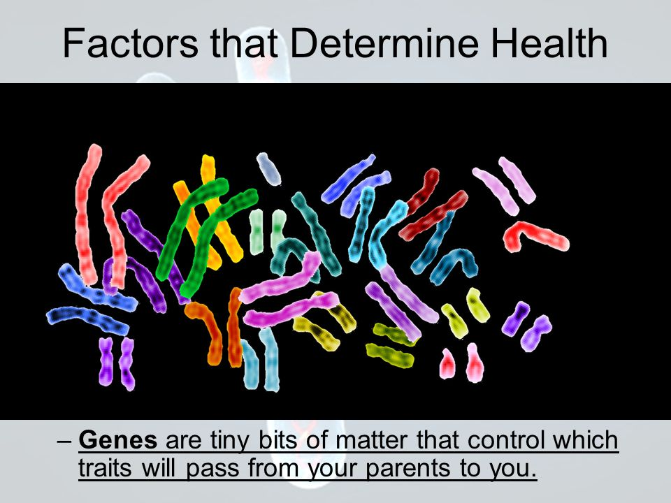 Factors that Determine Health Your mother always gives you X chromosomes.