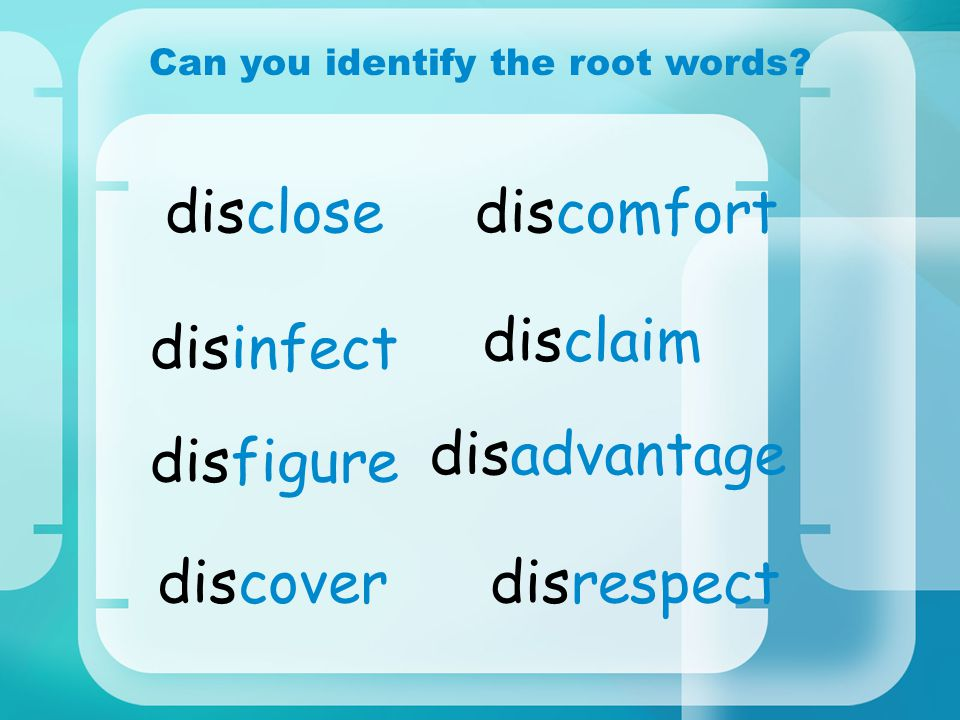 Can you identify the root words.