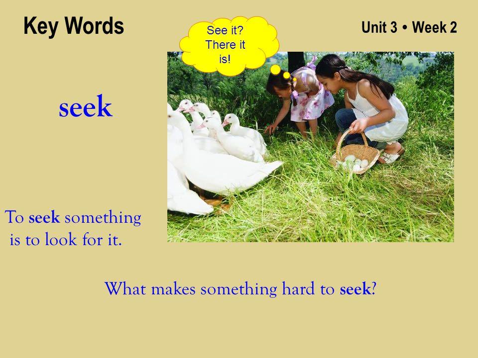 Unit 3 ● Week 2 seek Key Words To seek something is to look for it. See it? There it is! What makes something hard to seek ?