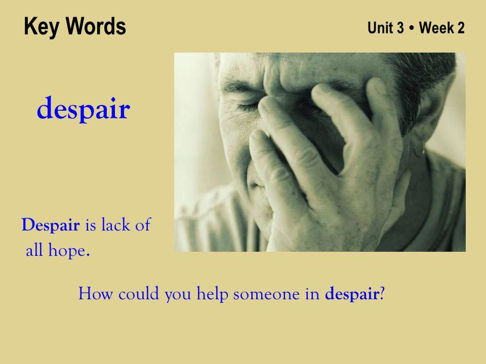 Unit 3 ● Week 2 despair Key Words Despair is lack of all hope. How could you help someone in despair ?