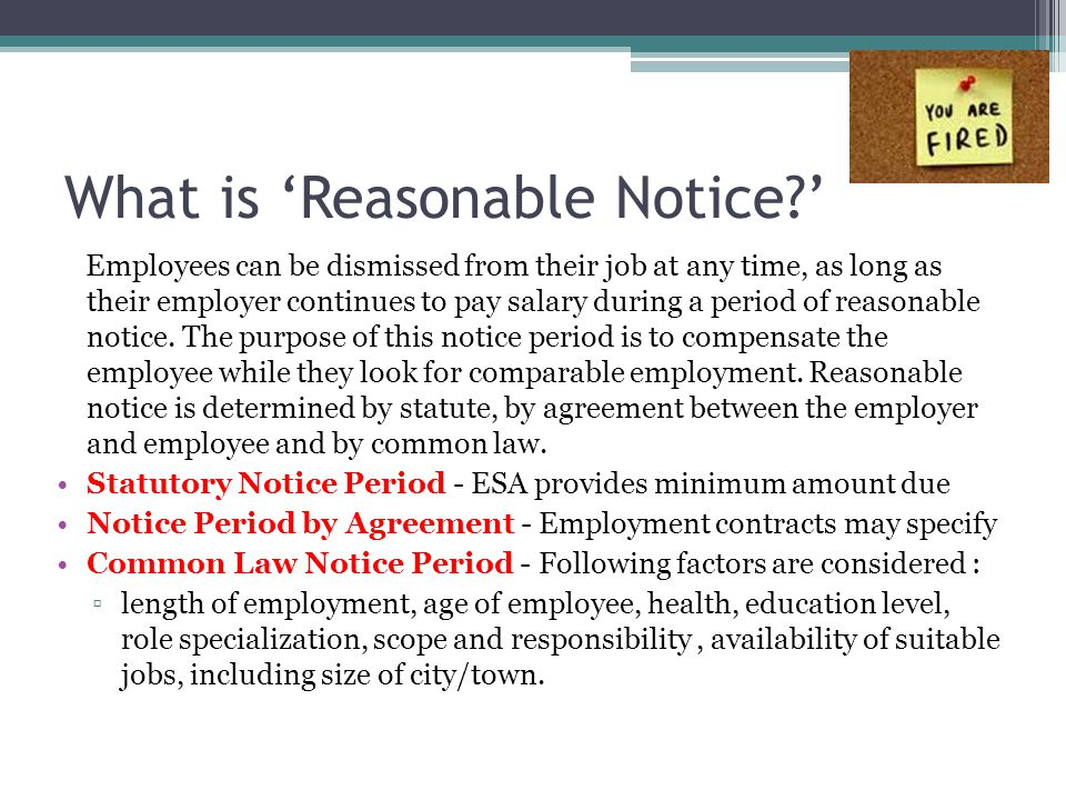 3) 'Just Cause'- Advantages Ensures companies held to higher standard- more carefully select, train and develop employees.