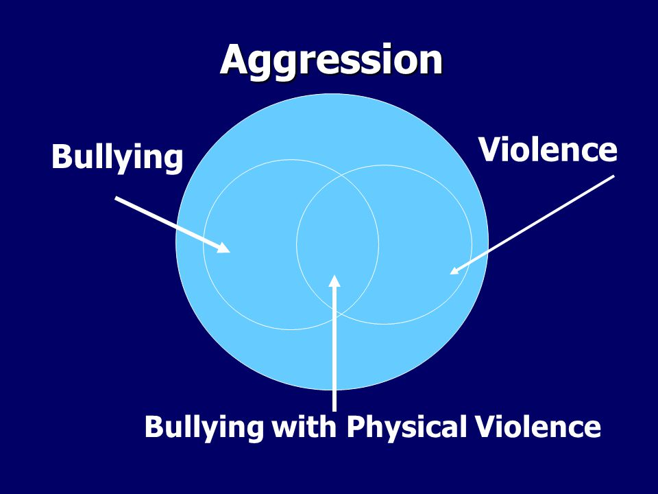 Aggression Bullying Violence Bullying with Physical Violence